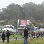 AIDS Walk 2016 stage
